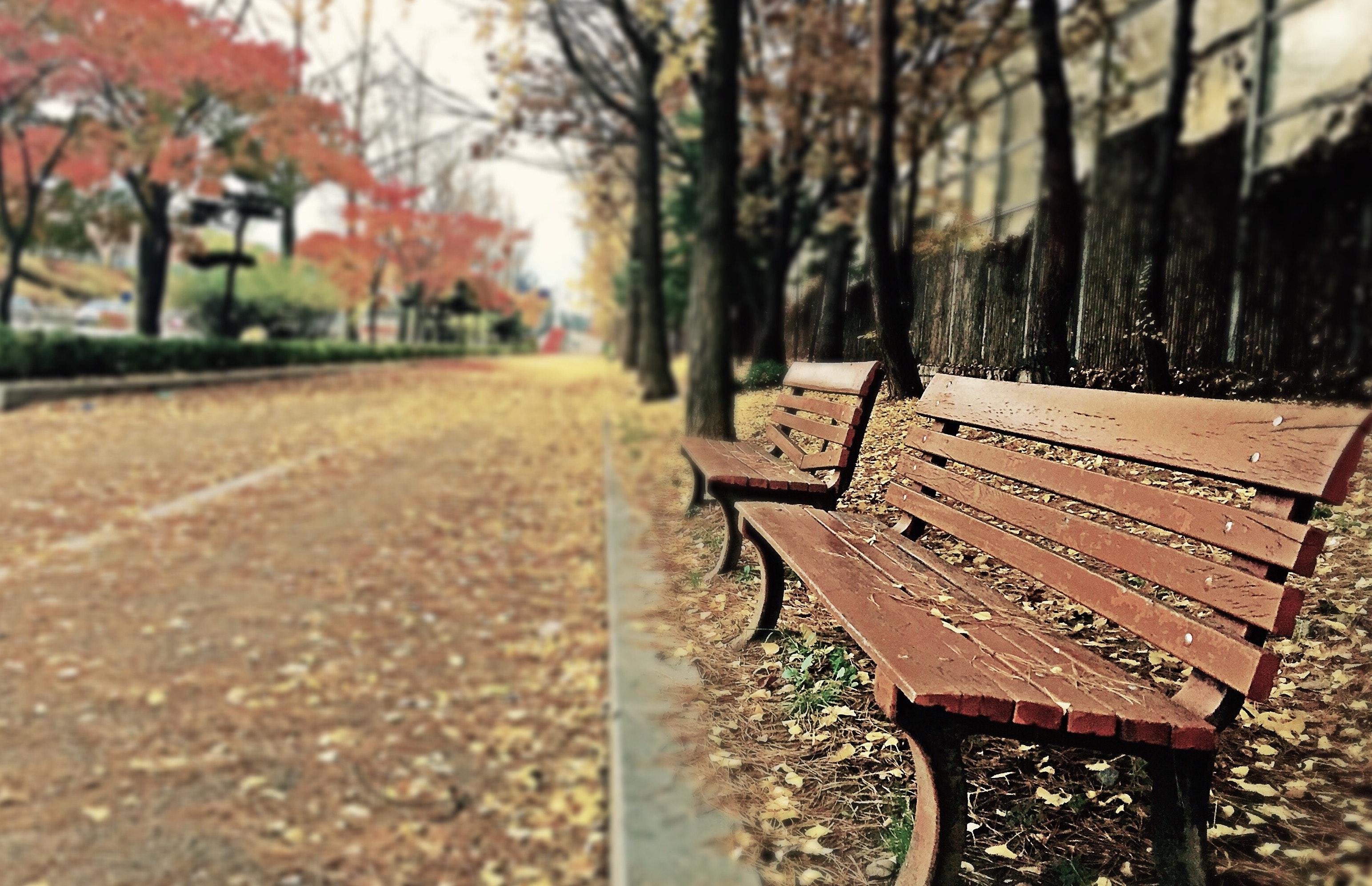 Stilte… Ik ben het niet meer gewend